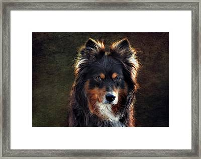 Lucy Framed Print by Claudia Moeckel