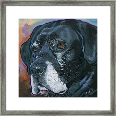 Lucy Framed Print by Nadi Spencer