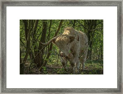 Lumbering Framed Print by Chris Fletcher