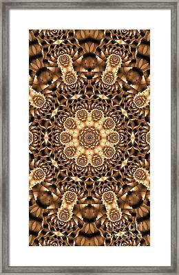 Kaleidoscope 86 Framed Print by Ron Bissett