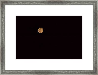 Luna Framed Print by Isabella Harris