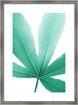 Macro Leaf Teal Vertical Framed Print by Jennie Marie Schell
