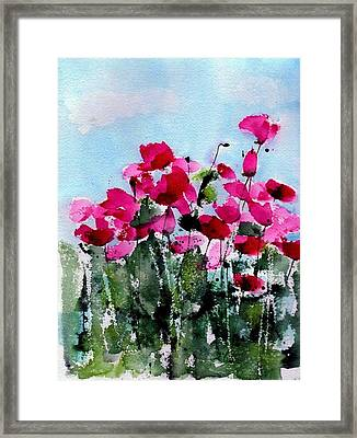 Maddy's Poppies Framed Print by Anne Duke