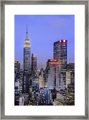 Made In New York Framed Print by Evelina Kremsdorf