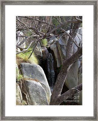 Madera Canyon Waterfall Framed Print by Feva Fotos
