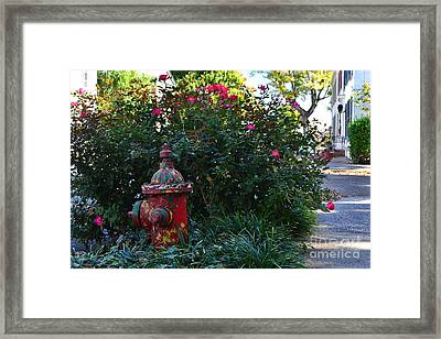 Madison Fire Hydrant Framed Print by Amy Lucid
