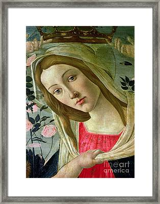 Madonna And Child Crowned By Angels Framed Print by Sandro Botticelli