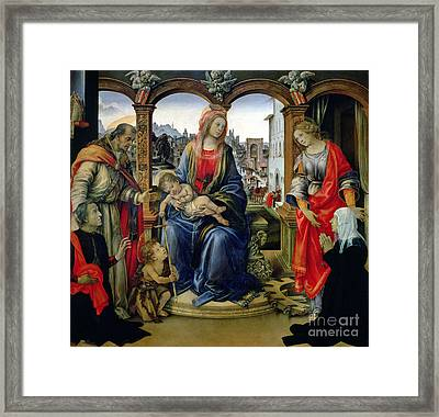 Madonna And Child Framed Print by Filippino Lippi