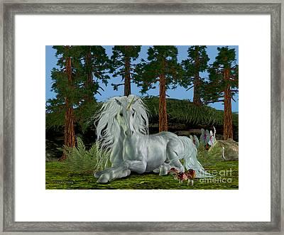 Magic Woodland Framed Print by Corey Ford