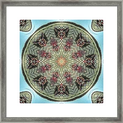 Magical Mosaic - Shamanic Power Circle 2 Framed Print by Sofia Goldberg