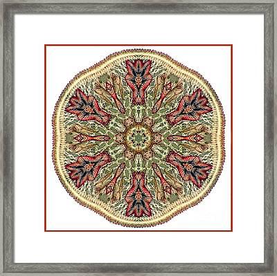 Magical Mosaic - Shamanic Power Circle 3 Framed Print by Sofia Goldberg