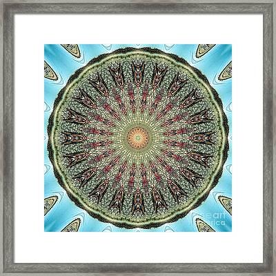 Magical Mosaic - Shamanic Power Circle 4 Framed Print by Sofia Goldberg