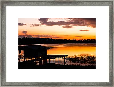 Magnificence  Framed Print by Shelby  Young
