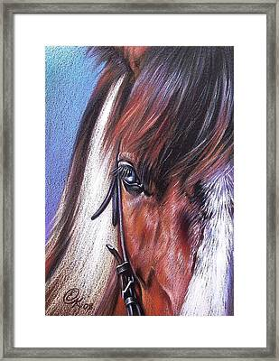 Magnificent Paint Framed Print by Elena Kolotusha