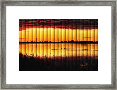 Magnificent Sunrise Swim Framed Print by Bill Kesler