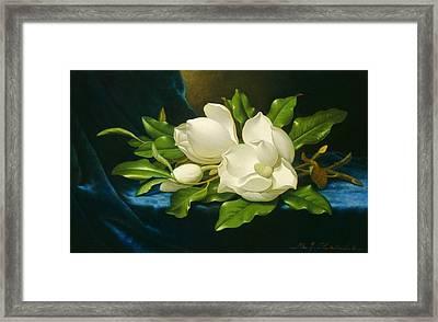 Magnolias On A Blue Velvet Cloth Framed Print by Martin Johnson Heade