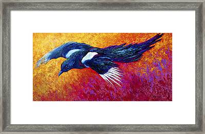 Magpie In Flight Framed Print by Marion Rose