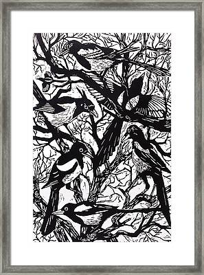 Magpies Framed Print by Nat Morley