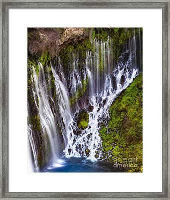 Majestic Falls Framed Print by Anthony Bonafede
