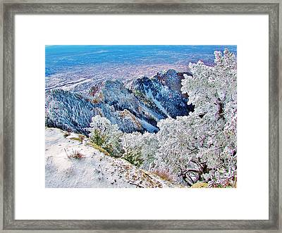 Majestic Snow Framed Print by Lois Rivera