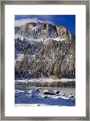 Majestically Cool Framed Print by Chris Brannen