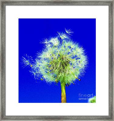 Framed Print featuring the digital art Make A Wish by Rodney Campbell