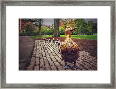 Make Way For Ducklings In Boston  Framed Print by Carol Japp