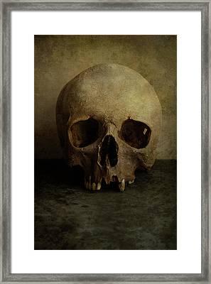 Male Skull In Retro Style Framed Print by Jaroslaw Blaminsky