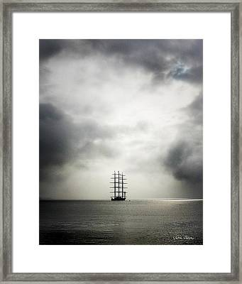 Maltese Falcon Framed Print by Sabine Stetson