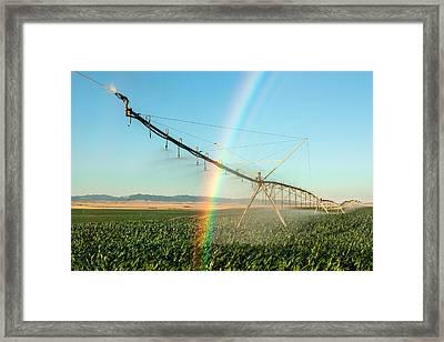 Man Made Rainbow Framed Print by Todd Klassy