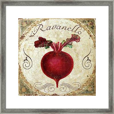 Mangia Radish Framed Print by Mindy Sommers
