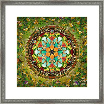 Mandala Evergreen Framed Print by Bedros Awak
