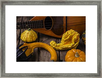 Mandolin And Gourds Framed Print by Garry Gay