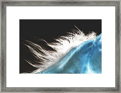 Mane Beauty Framed Print by ELA-EquusArt