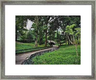 Manhattan - Central Park 001 Framed Print by Lance Vaughn