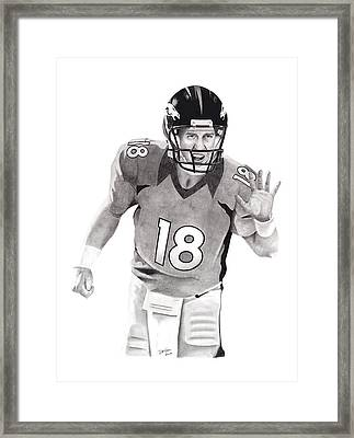 Manning Bronco Framed Print by Devin Millington
