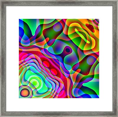 Manta Ray Framed Print by Charles Ragsdale