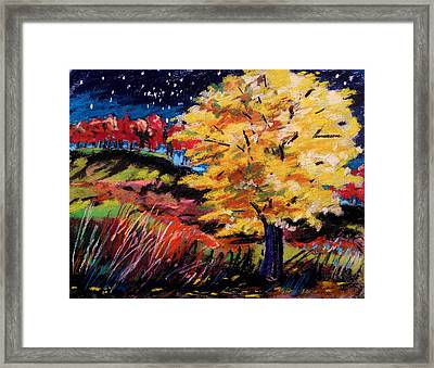 Maple At Night Framed Print by John  Williams