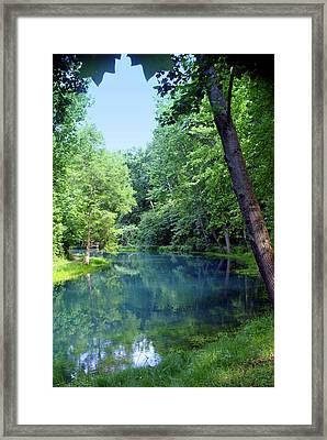Maramec Springs 2 Framed Print by Marty Koch