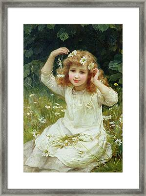 Marguerites Framed Print by Frederick Morgan