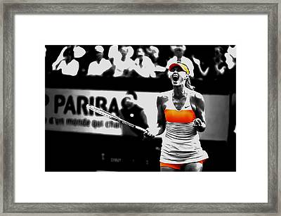 Maria Sharapova 031 Framed Print by Brian Reaves