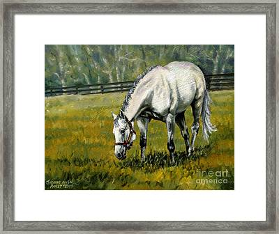Maria's Mon Framed Print by Thomas Allen Pauly