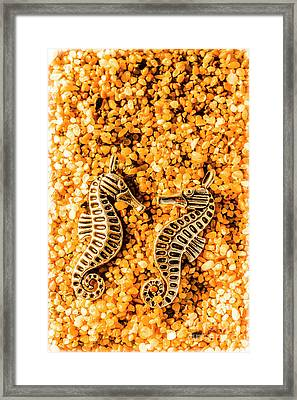 Marine Seahorse Ocean Charms Framed Print by Jorgo Photography - Wall Art Gallery