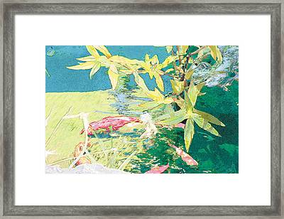 Marry-go-round Kio In The Spring-may Day Framed Print by Judy Loper
