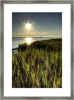 Marsh Grass Sunrise Framed Print by Dustin K Ryan