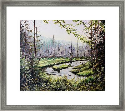 Marsh Lands Framed Print by Richard T Pranke