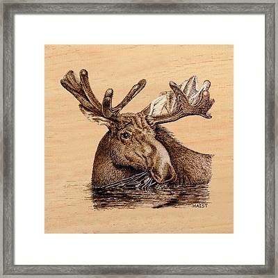 Marsh Moose Pillow/bag Framed Print by Ron Haist