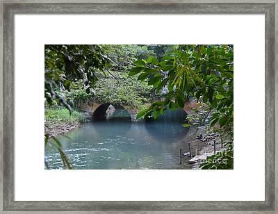 Martha Brae River Framed Print by Carol  Bradley