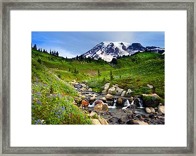 Martha Creek Wildflowers Framed Print by Mike  Dawson
