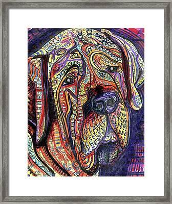 Mastiff Framed Print by Robert Wolverton Jr